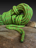 Arbotist or tree surgeon climbing rope close up. Green climbing rope coiled on brown tree stump Royalty Free Stock Photo