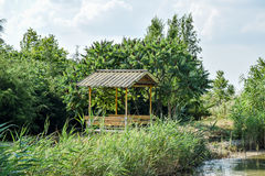 Arbour on the bank of the pond. Resting place on the nature of w. Ater Royalty Free Stock Images