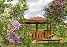 Arbour in an yard. Arbour in a lilac yard Royalty Free Stock Photography