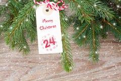 Arbre à feuilles persistantes avec l'étiquette de Noël Photos stock