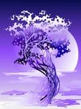Arbre abstrait dans la lumière violette Photos libres de droits