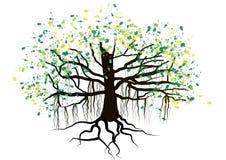 Arbre avec de racines la conception d'aquarelle sous terre, vecteur Photo stock