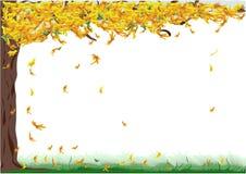 Arbre avec des lames d'automne Images libres de droits