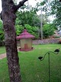 Arbre avec la maison d'oiseau Images libres de droits
