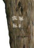 Arbre avec la marque les jours Texture en bois avec le compte à rebours Main d'aquarelle dessinant l'illustration réaliste artist Images stock