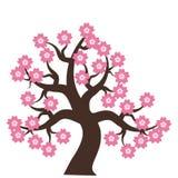 Arbre avec les fleurs roses Images stock