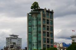 Arbre ayant beaucoup d'étages, Vancouver, Colombie-Britannique, Canada photo libre de droits