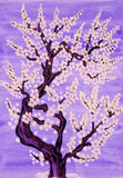 Arbre blanc dans la fleur, peignant Photos libres de droits