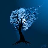 Arbre bleu images libres de droits