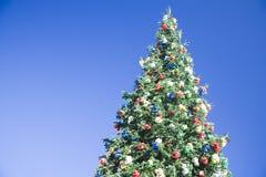 arbre bleu de ciel de Noël de fond Photos stock