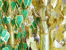 Arbre bouddhiste de mérite Image stock