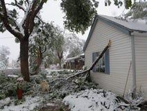 Arbre cassé, dommages de tempête d'hiver Images stock