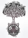 Arbre celtique d'illustration de la vie Images stock