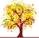 Arbre coloré d'automne illustration stock