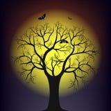 Arbre contre la lune Images libres de droits