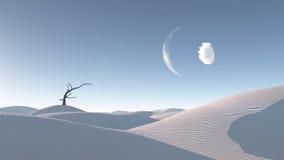 Arbre défraîchi en Zen Desert Landscape Images stock