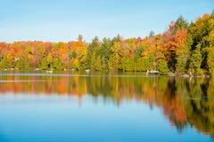 Arbre d'érable dans des couleurs d'automne Image stock