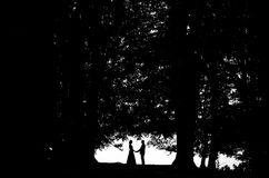 Arbre d'amour Photographie stock