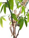 arbre d'argent Images libres de droits
