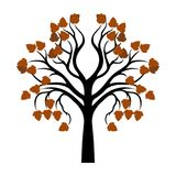 Arbre d'automne Photos libres de droits