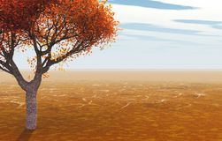 Arbre d'automne Photo libre de droits