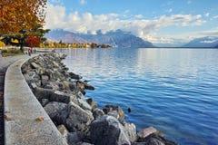 Arbre d'automne dans le remblai de la ville de Vevey et de Lac Léman, canton de Vaud Photos libres de droits