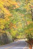 Arbre d'automne de Colorfull à nikko Japon Images stock