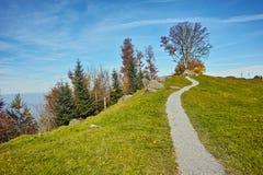 Arbre d'automne et panorama étonnant à la luzerne de lac Image libre de droits