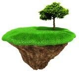 arbre 3d sur une petite île de parcelle Photos libres de droits