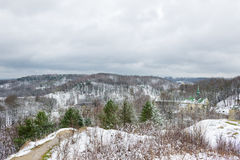 Arbre dans la neige en parc de Lviv Photographie stock libre de droits