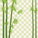 Arbre de bambou de vecteur Image libre de droits