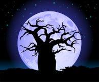 Arbre de baobab avec la silhouette de lune Image libre de droits