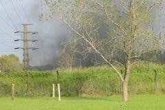 Arbre de betweem du feu et tour électrique Photos libres de droits