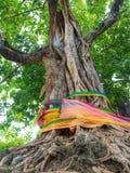 Arbre de Bodhi avec le tissu de couleur   Photographie stock
