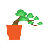 Arbre de bonsaïs sur le fond blanc, vecteur Images stock