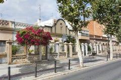 Arbre de bouganvillée s'élevant par la maison en Espagne Image stock