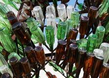 Arbre de bouteille Photographie stock libre de droits