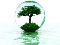 arbre de bulle Photos libres de droits