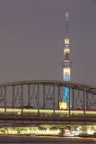 Arbre de ciel de Tokyo Photographie stock libre de droits