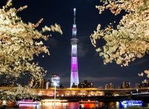 Arbre de ciel de Tokyo Images libres de droits