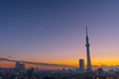 Arbre de ciel de Tokyo Photographie stock