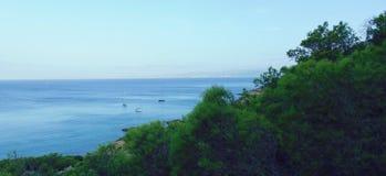 Arbre de ciel de mer photos libres de droits