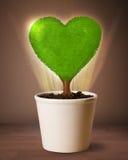Arbre de coeur d'Eco sortant du pot de fleurs Images libres de droits