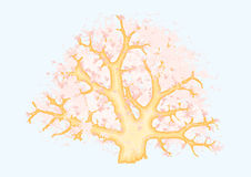 Arbre de corail illustration libre de droits