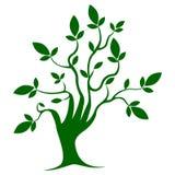 Arbre de couleur verte, calibre, symbole, croissance illustration libre de droits