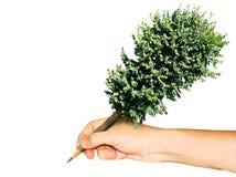 Arbre de crayon Image libre de droits