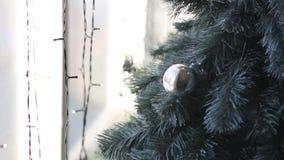 Arbre de Cristmas près de fenêtre avec l'illumination clips vidéos