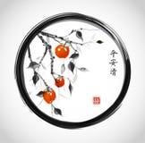arbre de Date-prune avec les fruits oranges en cercle noir de zen d'enso sur le fond blanc illustration stock