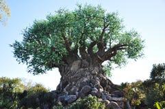 Arbre de durée dans le règne animal de Disney Image stock