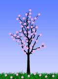 Arbre de fleur Images libres de droits